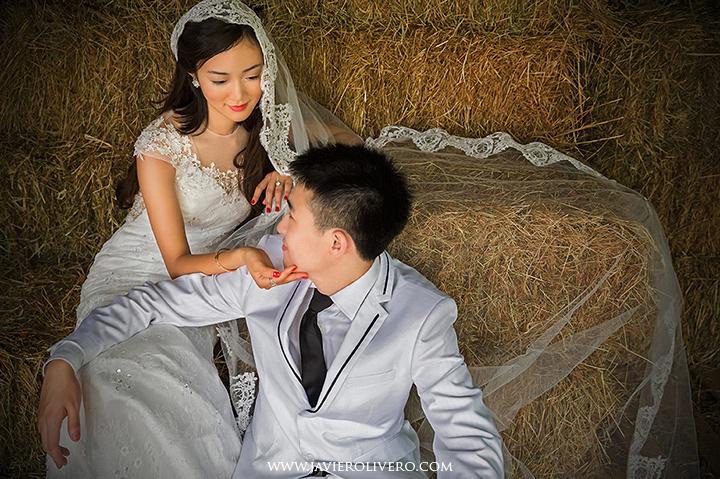 Palomino Island weddings